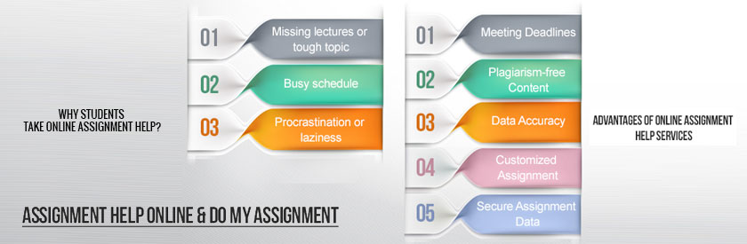 assignment help homework assistance to solve questions assignment help